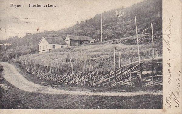 Espen, Hedemarken