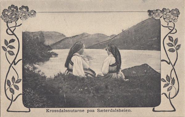 Krossdalsnutarne paa Sætersdalsheien.