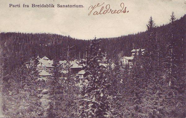 Parti fra Breidablik Sanatorium.