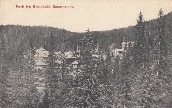 Parti fra Breldablik Sanatorium.