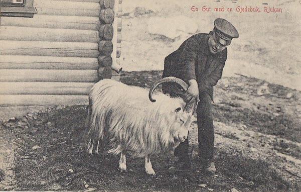 En Gut med en Gjedebuk, Rjukan
