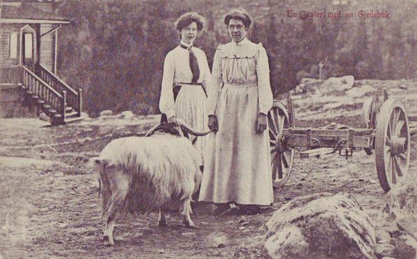 To Jenter med en Gjedebuk.