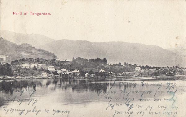 Parti af Tangaraas.