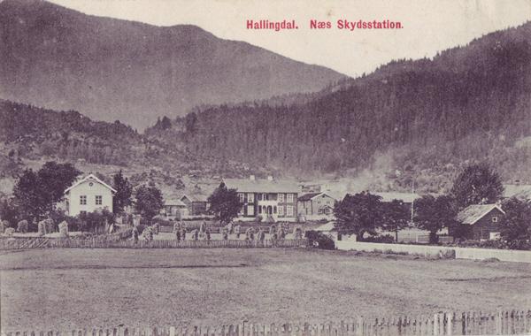 Hallingdal. Næs Skydsstation.