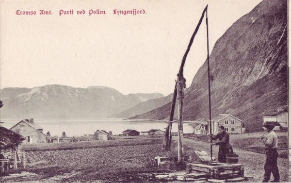Tromsø Amt. Parti ved Pollen. Lyngenfjord.