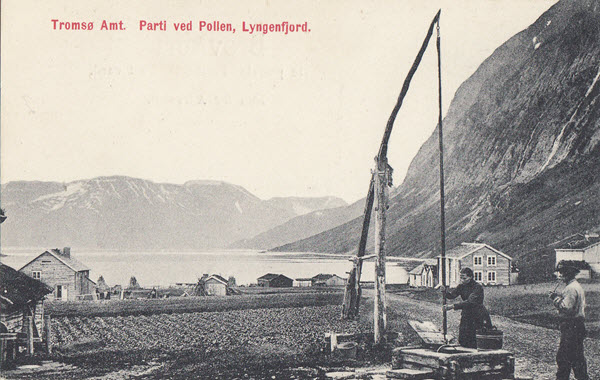 Tromsø Amt. Parti ved Pollen, Lyngenfjord.