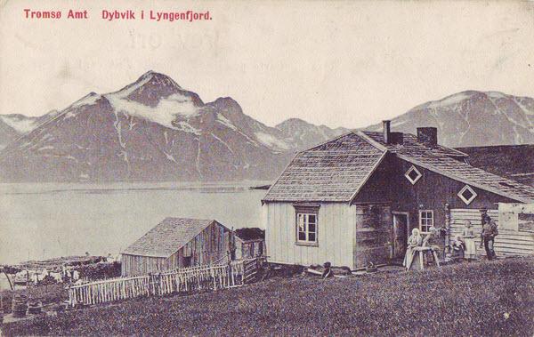 Tromsø Amt Dybvik i Lyngenfjord.