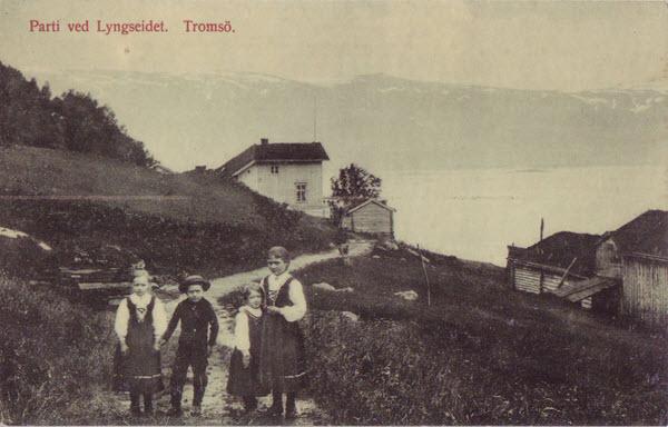 Parti ved Lyngseidet. Tromsö.