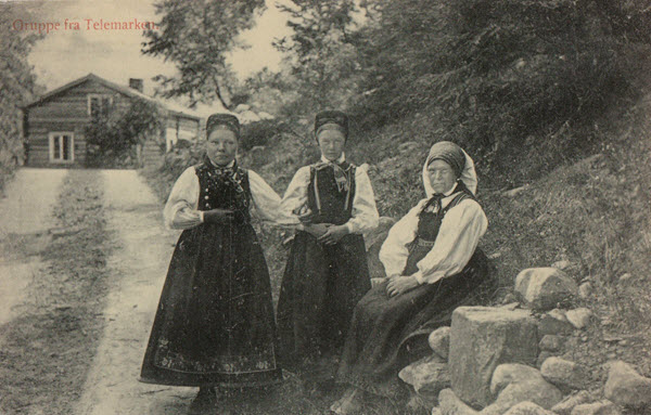 Gruppe fra Telemarken