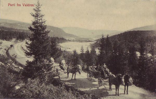 Parti fra Valdres.
