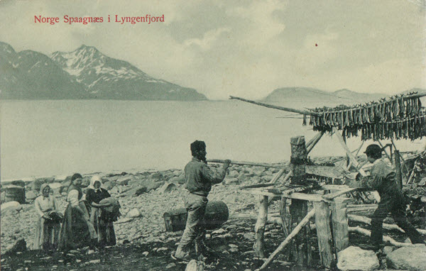 Norge Spaagnæs i Lyngenfjord